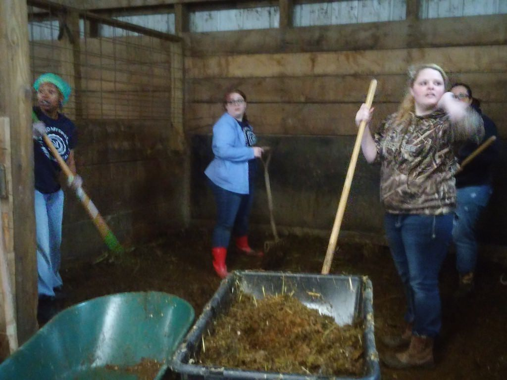 Ross Medical Education Center Canton Veterinary Assistant Barn Field Trip