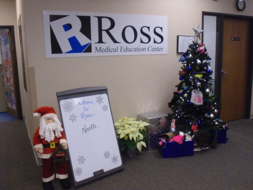 Ross Medical Education Center Port Huron KIDS in Distress Mitten Tree