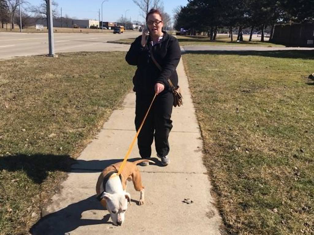 Ross Medical Education Center Taylor Walks Dogs for Taylor Animal Shelter