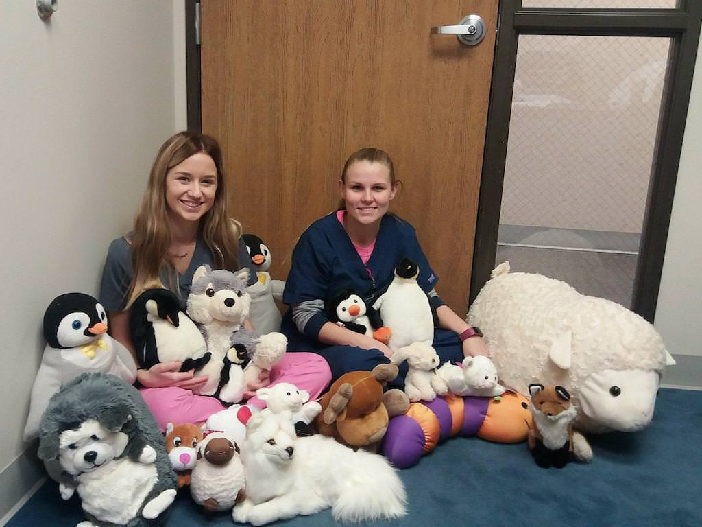 Ross College in Sylvania Collects Bears for Those in Need