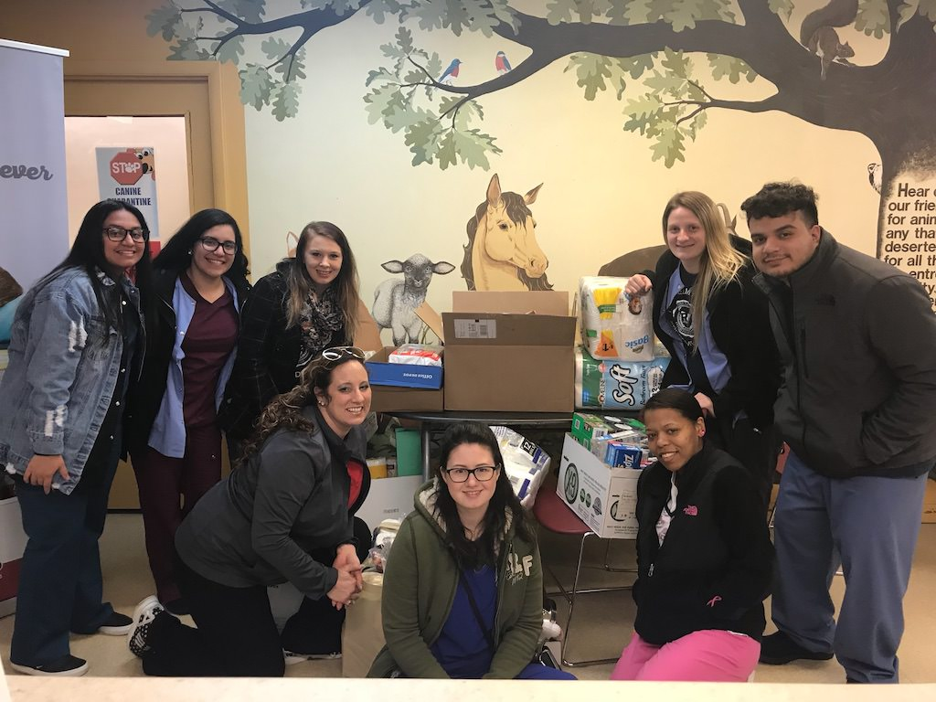 Ross Medical Education Center Fort Wayne Collects Supplies for Allen County SPCA