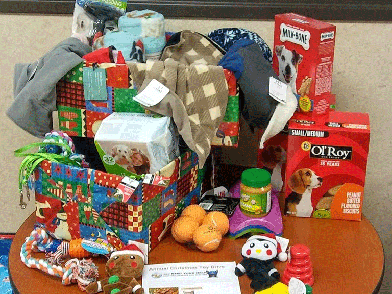 Davison Campus Collects Donations for Genesee County Animal Control